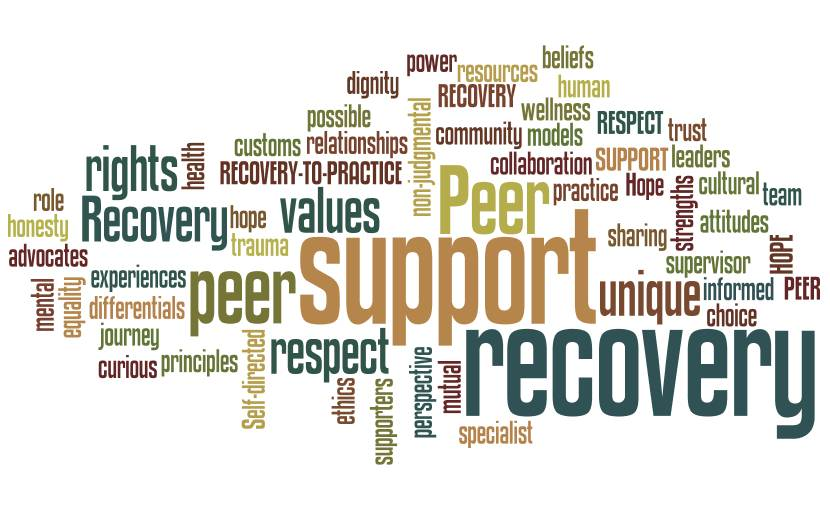 Health Recovery Group 24