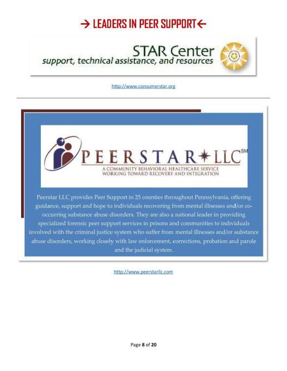 15 Leaders 7 - Star and PeerStar LLC