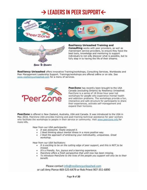 16 Leaders 8 - PeerZone and Resiliency Unleashed
